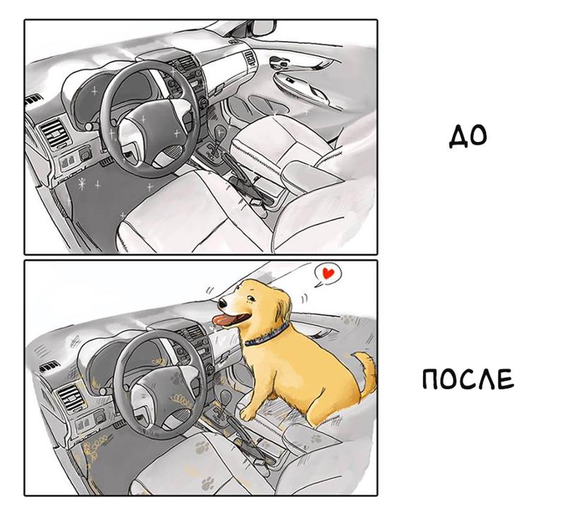 http://s9.uplds.ru/49NEF.png